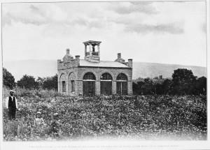 JohnBrca1895