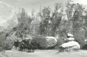 1960WhtEagl